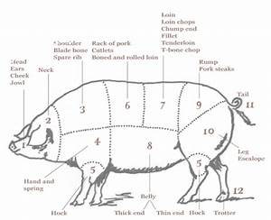 Learning The Art Of Butchery
