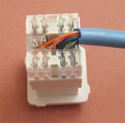terminating cat5e cable a wall mount or patch panel