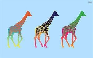 Giraffe Wallpaper Free HD 17860 - Amazing Wallpaperz
