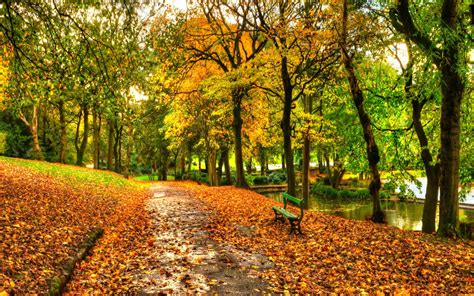 Fall Backgrounds New York by Autumn In New York Central Park Wallpaper For Widescreen