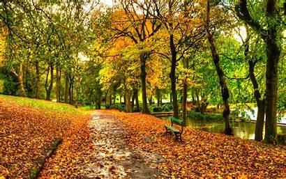 Central Park Desktop Autumn York Fall Widescreen