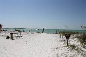 entrance to dog beach picture of honeymoon island state With honeymoon island dog beach