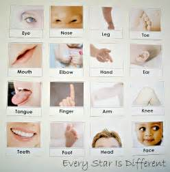 Body Parts Activities for Preschoolers