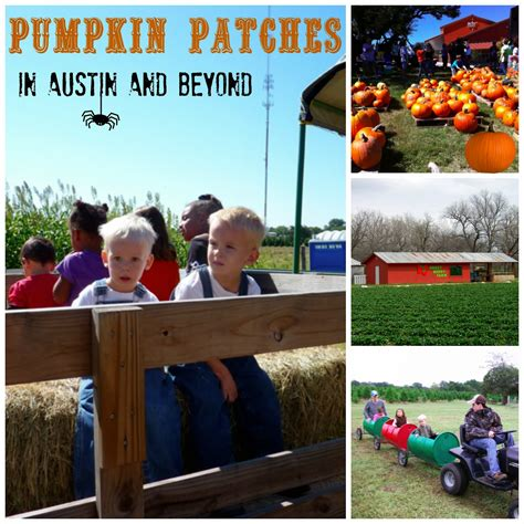 Pumpkin Patch Madison Wi by Pumpkin Patch Madison County Al Download Reipuncposlai