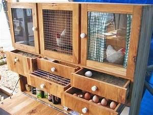 Hühnerstall Bauen Tipps : die besten 25 h hnerstall selbermachen ideen auf pinterest h hnerst lle h hnerzucht und ~ Markanthonyermac.com Haus und Dekorationen