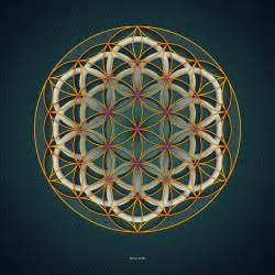 Sacred Flower Geometry Life