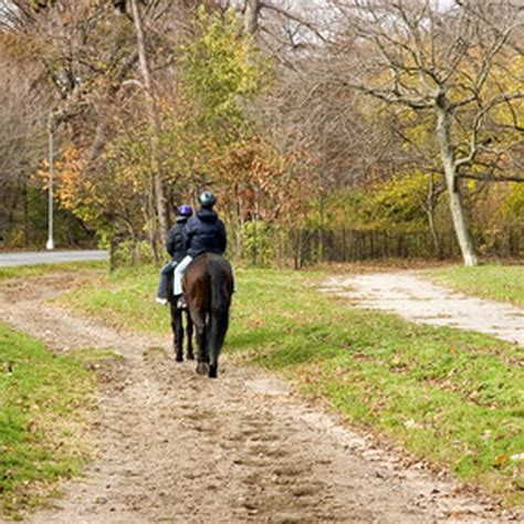 riding kentucky horseback lexington stables trail horse rides today fotolia formats