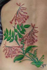 Looking For Unique Custom Tattoos Honeysuckle