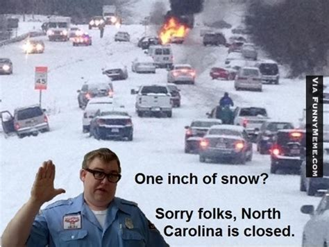 North Carolina Meme - made from scratch panthers vs cardinals cat scratch reader