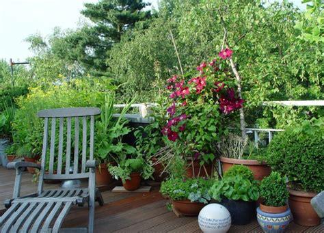 Ideen Für Balkongestaltung by Balkonbepflanzung Ideen Pflanzen F 252 R Jede Himmelsrichtung