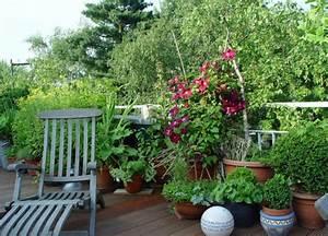 balkonbepflanzung ideen pflanzen fur jede himmelsrichtung With französischer balkon mit pflanzen für schattigen garten