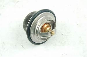 Sell Brand New Mercedes Actros Atego Scania Man Thermostat
