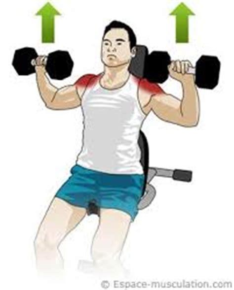 d 233 velopp 233 233 paules exercices de musculation megagear