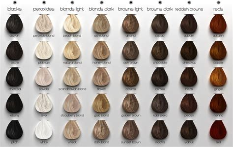 ash hair color chart ash hair color chart search s board