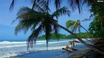 Tropical Beach Desktop Landscape Wallpapersafari Wallpaperwallpapers Youwall