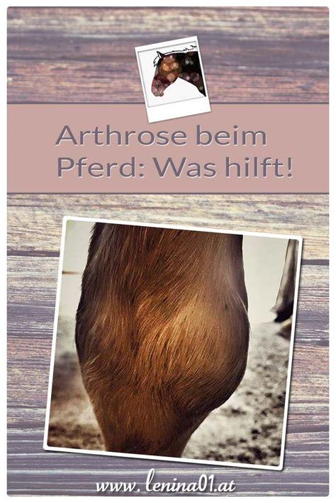 arthrose beim pferd  hilft leninaat