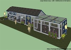 Inspiring Chicken House Plans For 20 Chickens Pictures