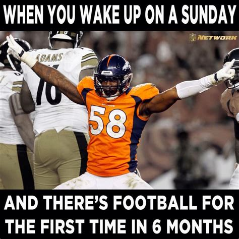 Football Season Meme - 17 best images about fantasy football on pinterest toilets football and trophy engraving