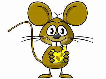 Rat Cheese Clipart Mouse Clip Eating Cartoon