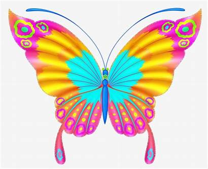 Butterfly Colorful Clipart Butterflies Clip Papillon Painted