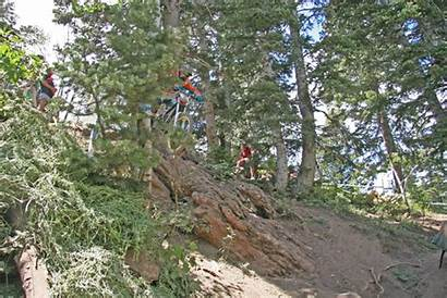 Deer Bike Crash Norba Valley 2006 Brakes