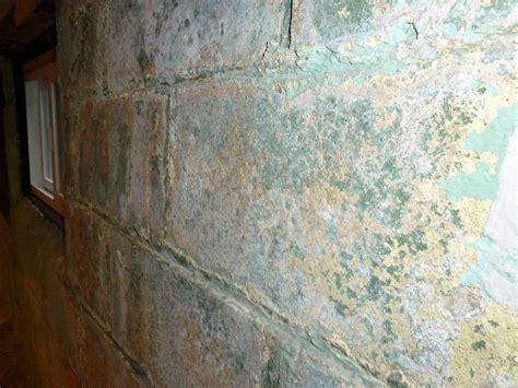 Peeling Paint In Your Basement Ohio State Waterproofing