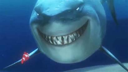 Shark Attack Pixar Nemo Finding Fish Smile