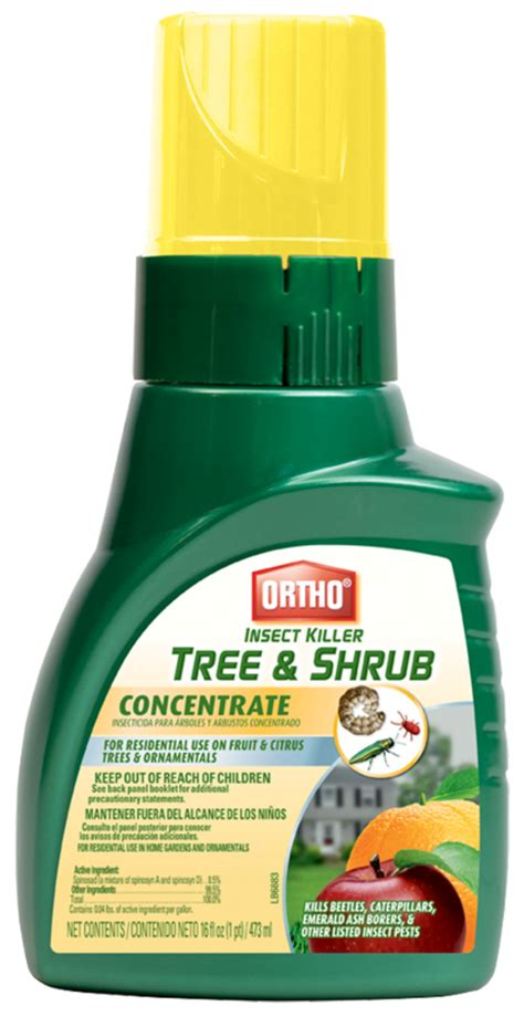 ortho insect killer tree  shrub concentrate