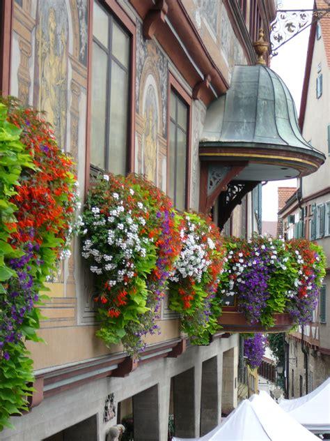 tubingen germany tubingen geranium window boxes window planters