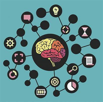 Mind Map Mapping Brain Brainstorming Maps Vector