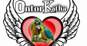 Romantic Santali Shayari Sms Free Read Nowwebsite Seo