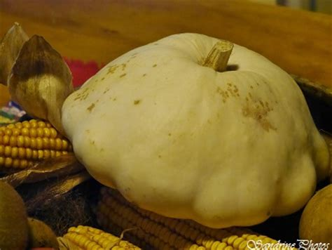 cuisiner le patisson blanc pâtisson blanc