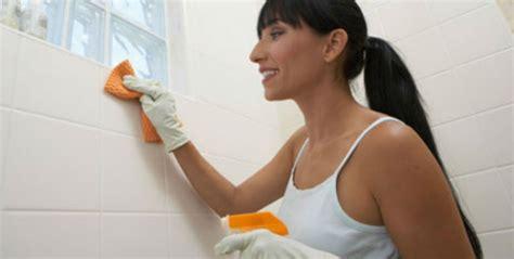 Ideas Para Limpiar El Baño  Me Lo Dijo Lola