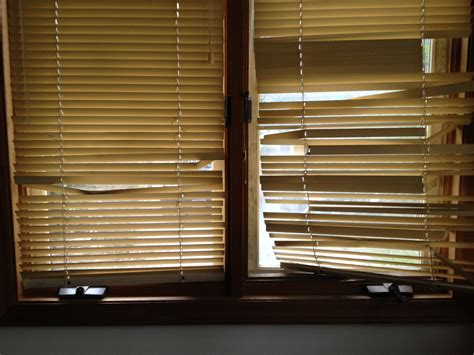used blinds for fitolddog agrees with sisson if it isn t forget it