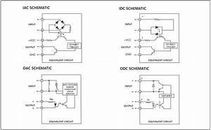 Iac  Idc  Oac  Odc Series Plc Digital I  O Module