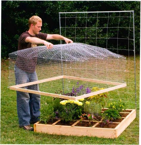 Garden Bed Cover Ideas wire mesh quot lid quot to keep out animals i
