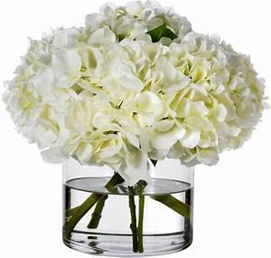 Heavenly White Hydrangeas || Diane James Home