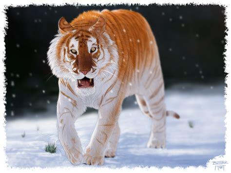 Artstation Golden Tabby Tiger Digital Painting Bear Hart