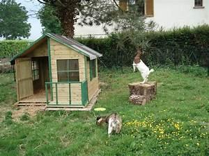 Comment Construire Une Cabane à écureuil : quelques liens utiles ~ Melissatoandfro.com Idées de Décoration
