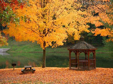 landscape pic landscape photo landscape pic landscape image
