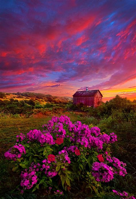 moment sunrise flower meadow barn