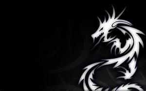 Dragon Logo Designs HD Wallpapers