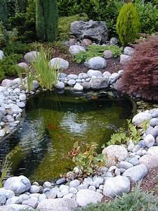 Bassin De Jardin Pour Poisson : dossier le bassin de jardin animalerie truffaut baillet ~ Premium-room.com Idées de Décoration
