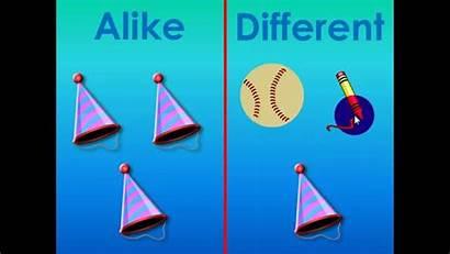 Alike Different Math Objects Preschool Sorting Elementary