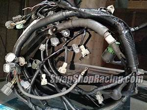 Custom Toyota Engine Wiring Harness