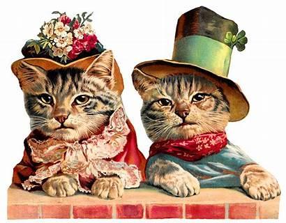 Victorian Cats Clothes Humorous Cat Clip Hat