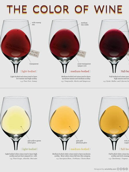 wine color colors in wine infographic by wine folly compare the