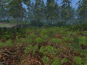 Forest Undergrowth V 1 0 Fs17