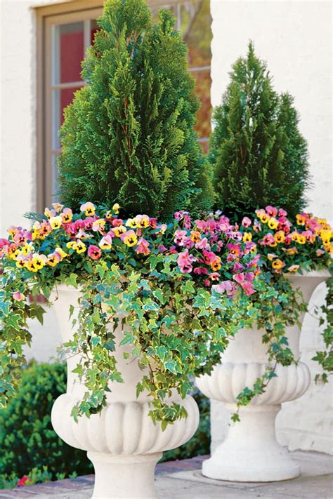 fall container planting ideas 389 best container gardens images on pinterest gardening flower beds and flowers garden