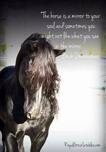 Famous Horse Qu... Funny Christmas Horse Quotes